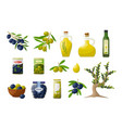 olives and products vector image