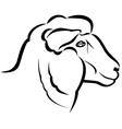 Sheep head vector image vector image