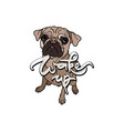 wake up with dog vector image vector image
