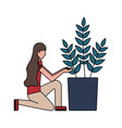 woman with potted plant decoration vector image