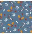 Seamless pattern with Christmas candies and vector image