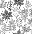 Black And White Seamless Pattern Of Patterned vector image vector image