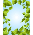 frame with green leaves vector image
