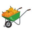 green carts with pumpkins vector image vector image