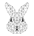 rabbit head low poly isolated icon vector image vector image