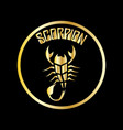 scorpion logo vector image vector image