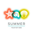 simple summer card with seashells design vector image