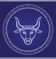 taurus zodiac astrology horoscope card vector image