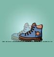 trekking shoes flat vector image