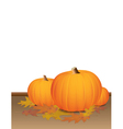 Autumn Pumpkins and Colorful Leaves vector image
