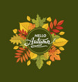 hello autumn pattern vector image
