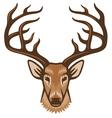 deer head vector image