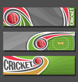 banners for cricket game vector image