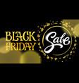 black friday sale lettering written in modern vector image vector image