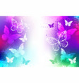 bright background with white butterflies vector image