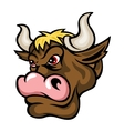 Brown bull vector image