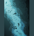 coral reef and underwater sea vector image vector image