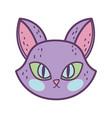 happy halloween celebration cat face purple color vector image
