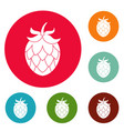 hop icons circle set vector image