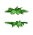 banner with tropical leaves on background vector image vector image