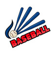 baseball equipment and word vector image vector image
