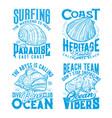 ocean molluscs seashells vintage t-shirt print vector image