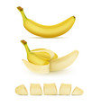 set of yellow bananas sweet tropical fruit vector image vector image