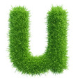 small grass letter u on white background vector image vector image