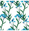 summer wildflower botany with leaves background vector image vector image
