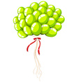 Green balloons with string vector image vector image