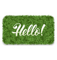Hello mat vector image vector image