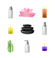 realistic detailed spa concept vector image