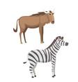 african animals cartoon set zebra and vector image