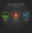 ayurveda doshas on black chalkboard background vector image