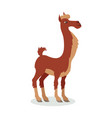 llama cartoon icon in flat design vector image vector image