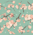 seamless spring flowers on tree branch pattern vector image vector image