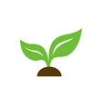eco icon green leaf isolated vector image