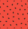 seamless watermelon texture background vector image vector image