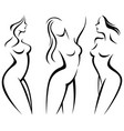 set stylized silhouettes woman body vector image vector image