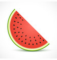 watermelon half slice isolated on white background vector image