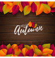 autumn with colorful leaves vector image vector image