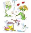 dandelion with dragonfly dandelion jam vector image