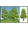 fir-tree vector image vector image