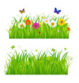 flowers and insects vector image vector image
