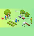 isometric apple orchard ripe fruits hanging on vector image
