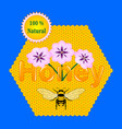 natural honey bee honeycomb flowers vector image