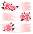 Three holiday banners with pink beautiful roses vector image vector image