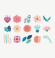 element floral flower pack set vector image