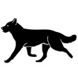 husky dog is running silhouette vector image vector image