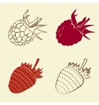 raspberry and strawberry icons vector image vector image